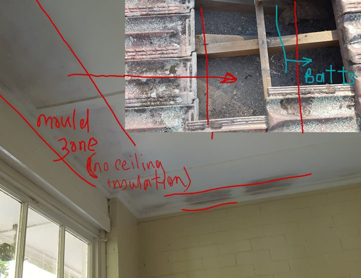 cause of ceiling mould