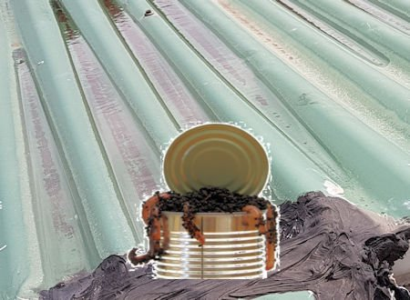 Leaking roof can be a can of worms