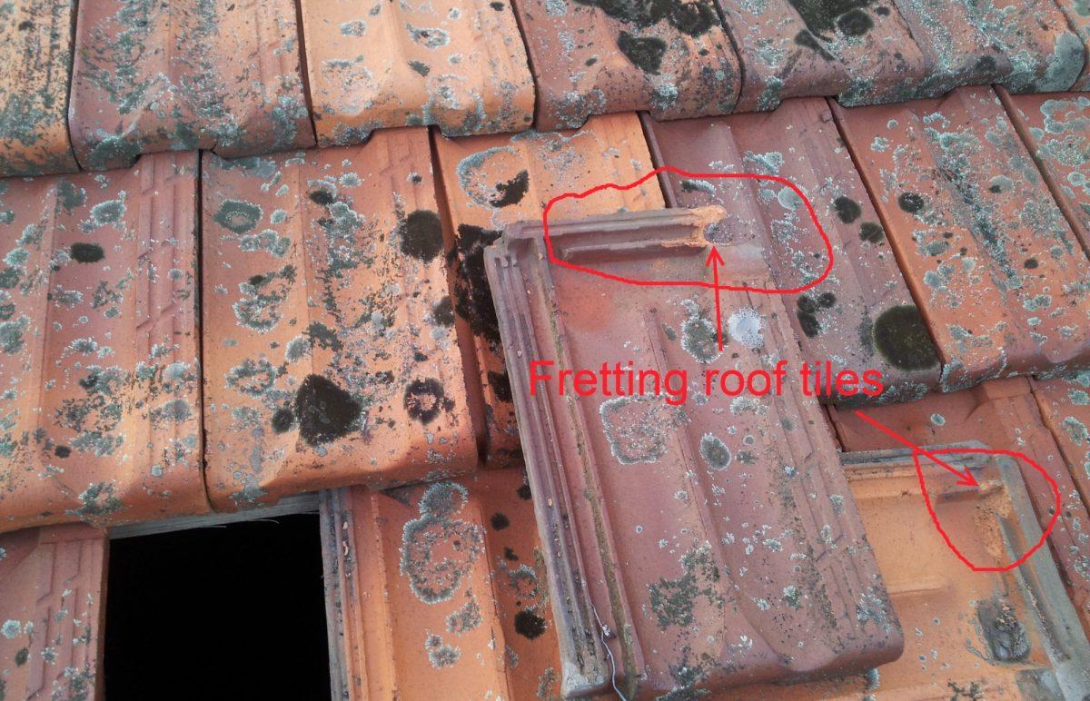 Fretting terracotta roof tiles