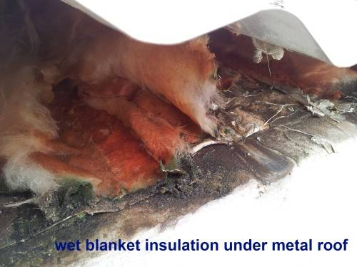 Anticon blanket insulation causing roof leaks