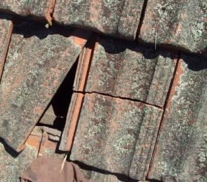 repair broken roof tile