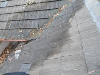 Looking for roof leaks